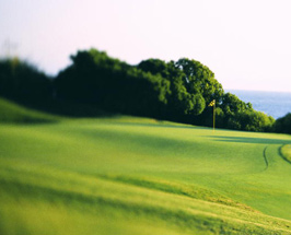 golfingcareerscom is the leading golf employment resource on the web providing unparalleled resources to job seeking golf professionals and employers